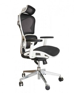 Avanti Ergonomic Office Chair – White