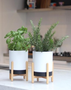 Indoor Planter – White/Black – Set of 2