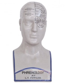 Phrenology Head – Large